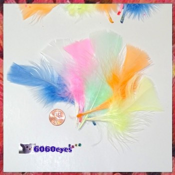 Feathers: 0.49oz Bag Assorted Pastel Feathers