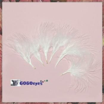 Feathers: 0.25oz Bag White