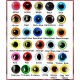 YOU CHOOSE 15mm Color Plastic eyes, Safety eyes, Animal Eyes, Round eyes